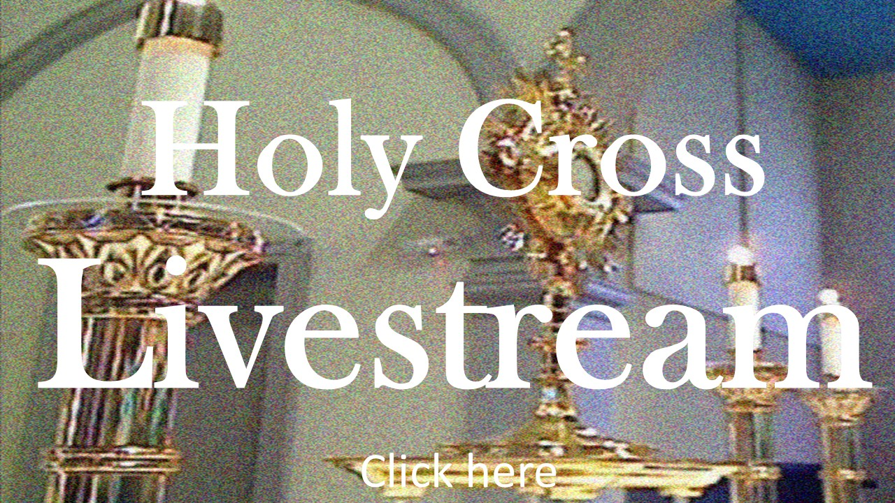 040220 Holy Cross Livestream
